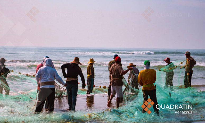 Mejora venta de mariscos; tras pandemia, pescadores se recuperan
